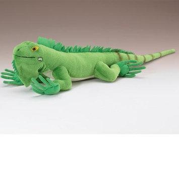 Iguana 24