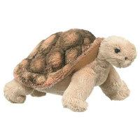 Tortoise 6.5