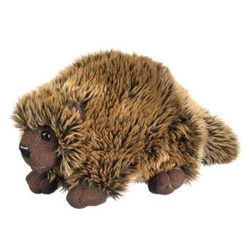 Porcupine 8 by Wild Life Artist