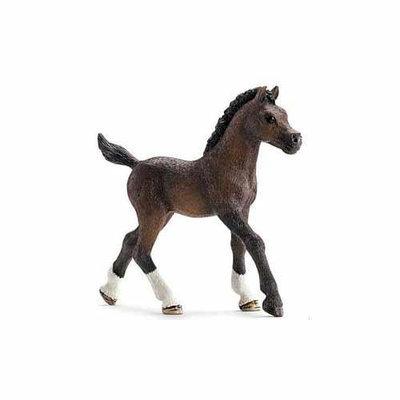 Schleich North America, Inc. Arabian Foal Figurine by Schleich - 13762