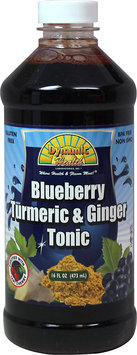 Dynamic Health Laboratories Blueberry Turmeric Ginger Tonic