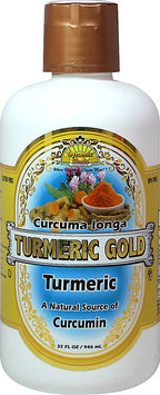 Dynamic Health Laboratories Turmeric Gold