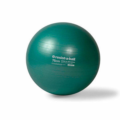 Mad Dogg Athletics Inc Resist-A-Ball Stability Ball, 75cm, Mist Green