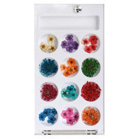 Bundle Monster BMC 12 Style Variety Multicolor 3D Nail Art Real Dried Pressed Flowers - Set 1
