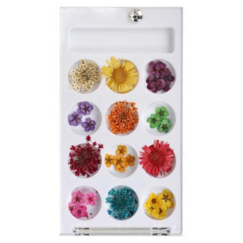 Bundle Monster BMC 12 Style Variety Multicolor 3D Nail Art Real Dried Pressed Flowers - Set 2