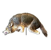 Bird X COYOTE-3D Lifelike Full-Size Predator 3D Coyote
