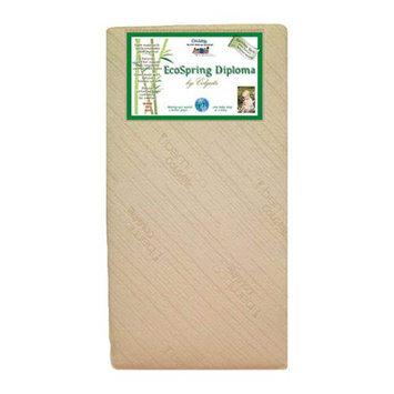 Colgate Shades Of Green EcoSpring Diploma Crib Mattress