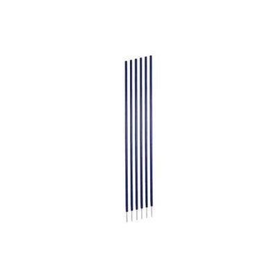 Champion Sports Coaching Sticks in Blue - Set of 6