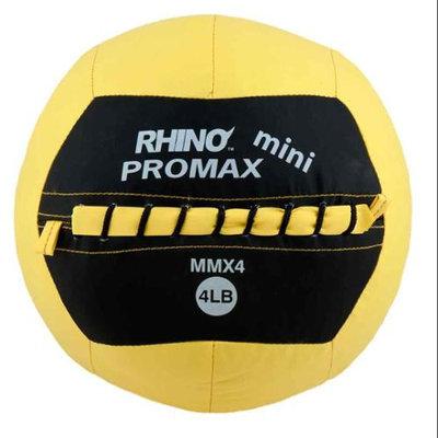 Champion Sports 4lb Mini Rhino Promax Slam Ball