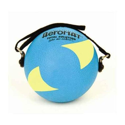 Aeromat Power Yoga / Pilates Weight Ball Color: Teal / Yellow