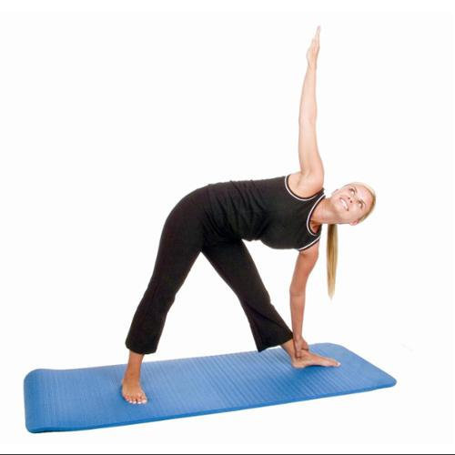 Eco Wise Fitness Ecowise 84201 Workout and Fitness Mat- Blue Dahlia
