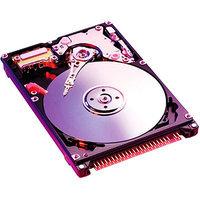 Western Digital Scorpio WD800BEVE 80GB Internal Hard Drive - Bulk