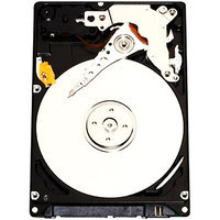 Western Digital Scorpio Black WD2500BEKT 250GB Internal Hard Drive - Bulk