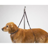 Pet Pals TP18240 Top Performance Nylon Table Harness 27 In