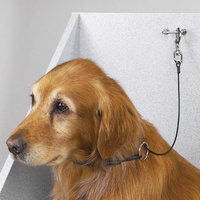 Top Performance Dog Cable Choker Restraint