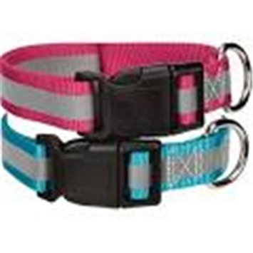 Petedge Dealer Services Guardian Gear Brite Reflective Dog Collar SM Rasp