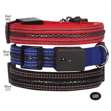 Pet Edge Dealer Services Casual Canine LED Dog Collar 16-24 Red