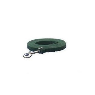 Pet Pals Guardian Gear Dog Training Lead 6Ft Green