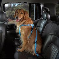 Pet Pals Cruising Companion Dog Car Harness XL Black