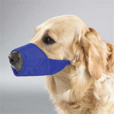 Guardian Gear Lined Nylon Dog Muzzle 4 Blue