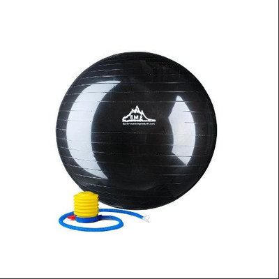 Black Mountain Products 29.5-in. Burst-Resistant Fitness Ball