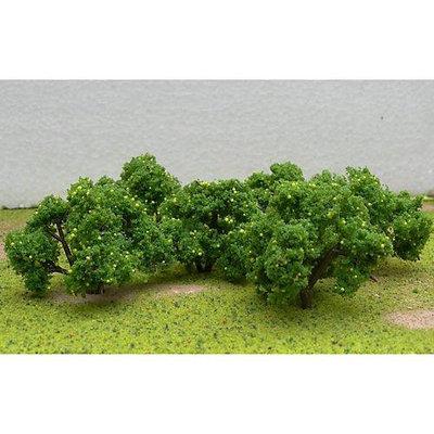Fruit Grove Trees, Lemon 2-2.25 (6) JTT92123 JTT SCENERY PRODUCTS