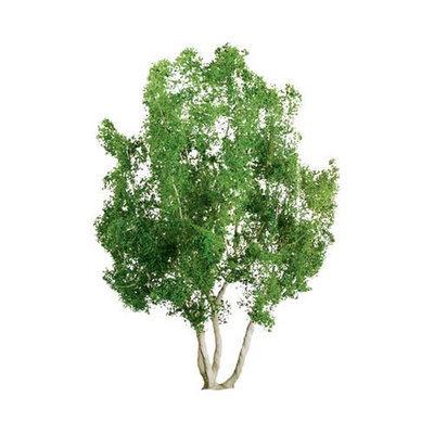 Jtt Scenery Products JTT Miniature Tree 94257 Professional Tree, Snow Gum 2.5