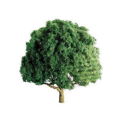Pro Tree, Oak 2.5 (2) JTT94263 JTT SCENERY PRODUCTS