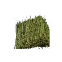Field Grass, Light Green JTT95086 JTT SCENERY PRODUCTS