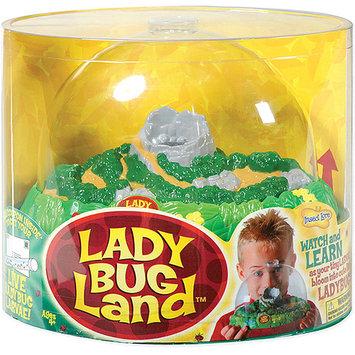 Insect Lore Ladybug Land - 4 Years