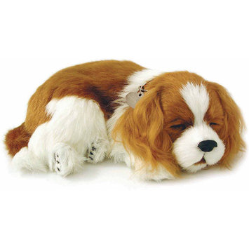Perfect Petzzz Cavalier King Charles Soft Toy