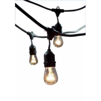 Bulbrite STRING15/E26-S14KT 48 ft. Outdoor Incandescent String Light