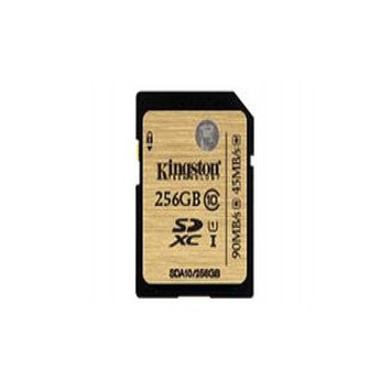 Kingston 256GB Secure Digital Extended Capacity (SDXC)