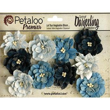Petaloo Darjeeling Teastained Dahlia Flowers 10/Pkg-Blue