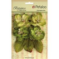 Petaloo P1102-104 Botanica Blooms 4-Pkg-Teal