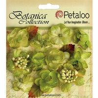 Petaloo P1101-108 Botanica Minis 11-Pkg-Pistachio