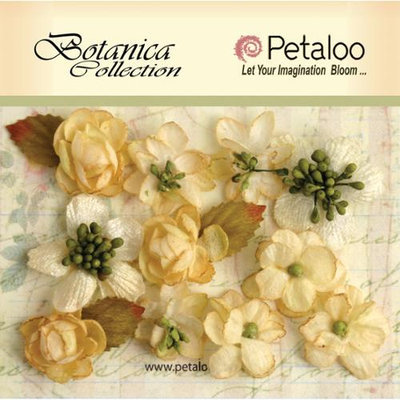 Petaloo NOTM266663 - Botanica Minis 1
