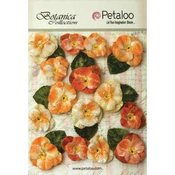 Petaloo Botanica Vintage Velvet Pansies 1in To 1.5in 15/Pkg Apricot