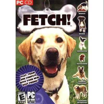 ValuSoft 71228 PC Pet Game