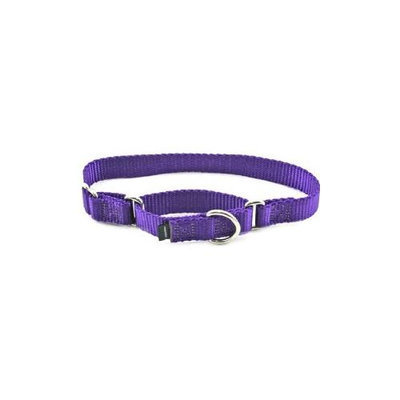 Premier Pet Products Premier Nylon Martingale Collar - Petite - Purple