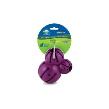 Pet Safe Busy Buddy Barnacle Treat Dispensing Dog Toy MED