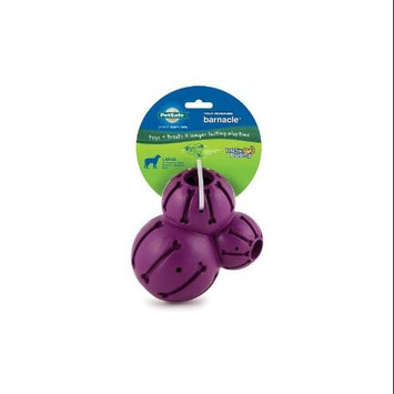 Pet Safe Busy Buddy Barnacle Treat Dispensing Dog Toy LRG