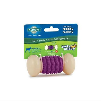 Pet Safe Busy Buddy Nobbly Nubbly Treat Dog Toy X-Small