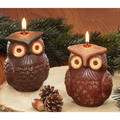 Cc Home Furnishings Pack of 6 Modern Lodge Earth Toned Owl Bird Candles 4 - Unscented