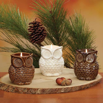 Cc Home Furnishings Pack of 6 In the Birches Ceramic Owl Candles 3