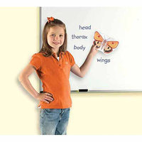 Learning Resources LER6042 Giant Magnetic Insects