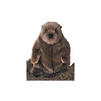 Chuckwood Groundhog 11