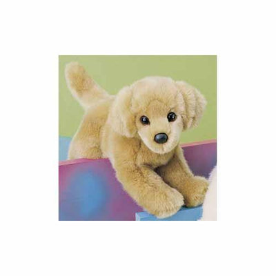 Sandi Golden Retriever 12