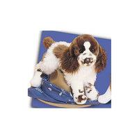 Douglas Cuddle Toys - Ogilvy Springer Spaniel
