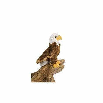 Colbert Eagle 8